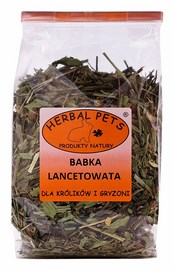 Herbal Pets babka lancetowata